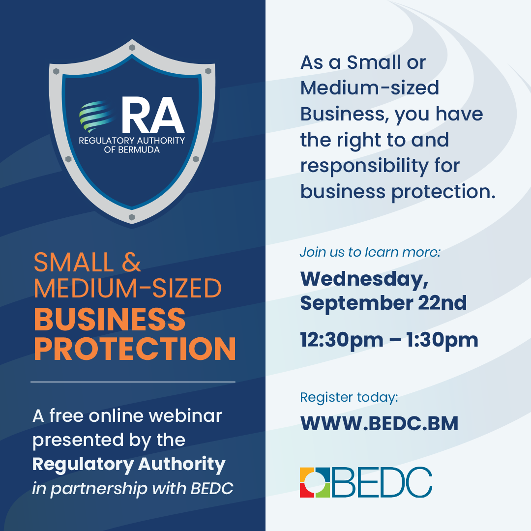 Small & Medium Sized Business Protection